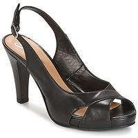 Čevlji  Ženske Sandali & Odprti čevlji Betty London LIMONADE Črna