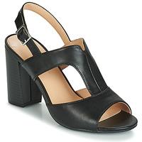Čevlji  Ženske Sandali & Odprti čevlji Moony Mood JALILIA Črna