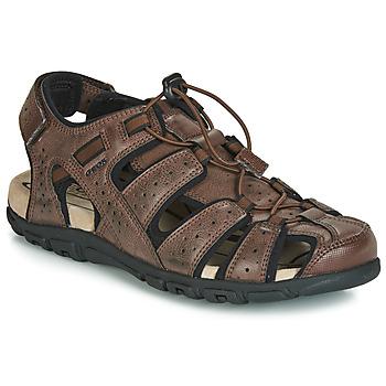 Čevlji  Moški Športni sandali Geox UOMO SANDAL STRADA Kostanjeva