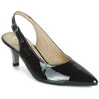 Čevlji  Ženske Salonarji Dorking 7814 Črna