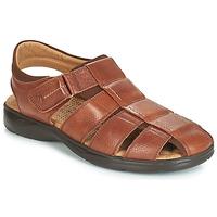Čevlji  Moški Sandali & Odprti čevlji Fluchos DOZER Kostanjeva