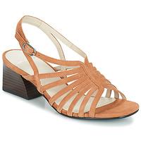 Čevlji  Ženske Sandali & Odprti čevlji Vagabond Shoemakers BELLA Bež