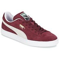 Čevlji  Nizke superge Puma SUEDE CLASSIC + Bordo