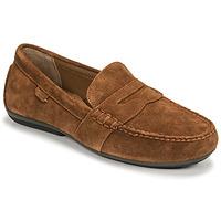 Čevlji  Moški Mokasini Polo Ralph Lauren REYNOLD Maron