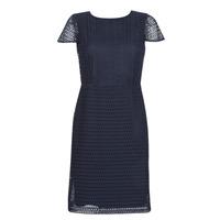 Oblačila Ženske Kratke obleke Lauren Ralph Lauren NAVY SHORT SLEEVE DAY DRESS Modra