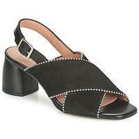 Čevlji  Ženske Sandali & Odprti čevlji Fericelli JARIANI Črna