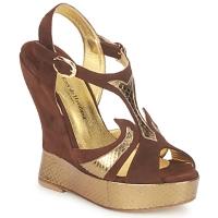 Čevlji  Ženske Sandali & Odprti čevlji Terry de Havilland FARAH Čokoladna