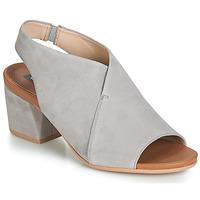 Čevlji  Ženske Sandali & Odprti čevlji Wonders FILETI Taupe