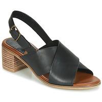 Čevlji  Ženske Sandali & Odprti čevlji Kickers VICTORIANE Črna