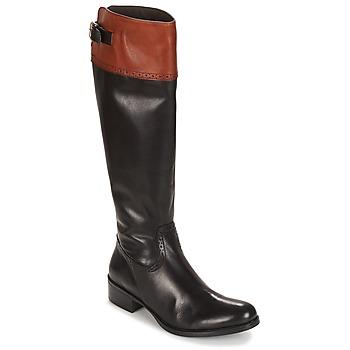 Čevlji  Ženske Mestni škornji    Moda In Pelle TULSY Črna