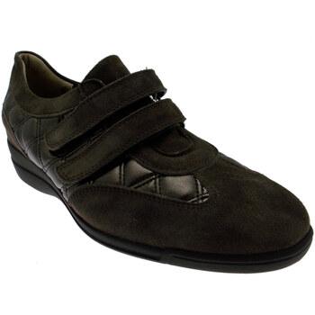 Čevlji  Ženske Nizke superge Calzaturificio Loren LOL8075m marrone