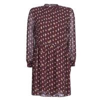Oblačila Ženske Kratke obleke Betty London LILY Bordo