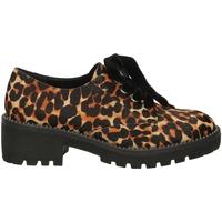 Čevlji  Ženske Čevlji Derby Apepazza CARA leopa-leopardo