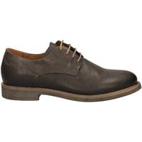 Čevlji  Moški Čevlji Derby IgI&CO UCW 11036 peltr-peltro