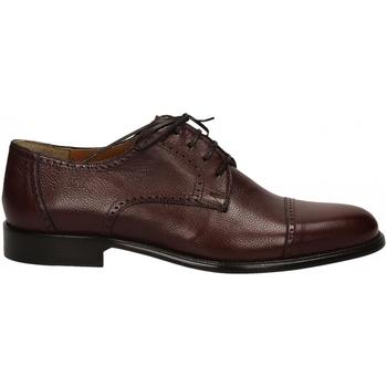 Čevlji  Moški Čevlji Derby Edward's OLBIA SACCHETTO testa-di-moro