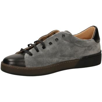 Čevlji  Moški Nizke superge Frau SUEDEBIMATER grigi-grigio