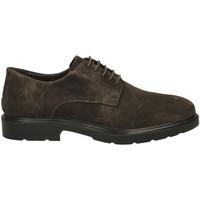 Čevlji  Moški Čevlji Derby IgI&CO UGL 21006 caffe-caffe_SS_