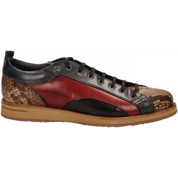 Čevlji  Moški Nizke superge Brecos PITONE roccia