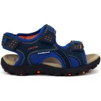 Čevlji  Otroci Športni sandali Geox JR Strada Mornarsko modra