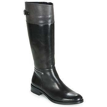 Čevlji  Ženske Mestni škornji    Dorking TIERRA Črna / Siva