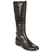 Čevlji  Ženske Mestni škornji    Gabor 3164228 Kostanjeva