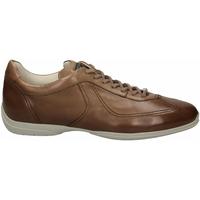 Čevlji  Moški Čevlji Derby Santoni PEDULA 7F+INF. GOOSE PLUS e50-marrone-medio