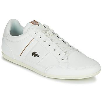 Čevlji  Moški Nizke superge Lacoste CHAYMON 319 1 Bela