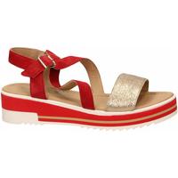 Čevlji  Ženske Sandali & Odprti čevlji IgI&CO DPY 31917 rosso