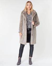 Oblačila Ženske Plašči Oakwood CYBER Tmavá / Bež