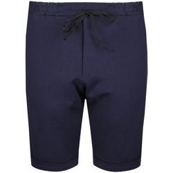 Oblačila Moški Kratke hlače & Bermuda Inni Producenci  Modra