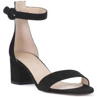 Čevlji  Ženske Sandali & Odprti čevlji Priv Lab CAMOSCIO NERO Nero
