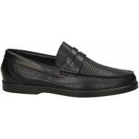 Čevlji  Moški Mokasini IgI&CO UCE 31095 nero