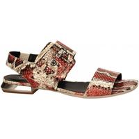 Čevlji  Ženske Sandali & Odprti čevlji Laura Bellariva PITONE coral