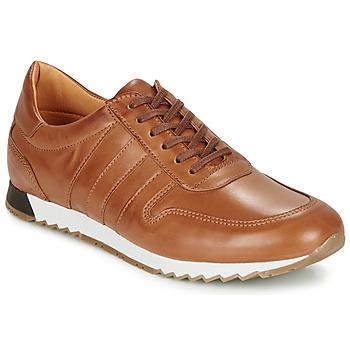 Čevlji  Moški Nizke superge So Size FELIX Kamel