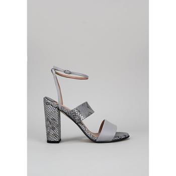Čevlji  Ženske Sandali & Odprti čevlji Roberto Torretta  Siva