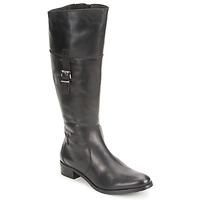 Čevlji  Ženske Mestni škornji    Fidji ERTUNI Črna