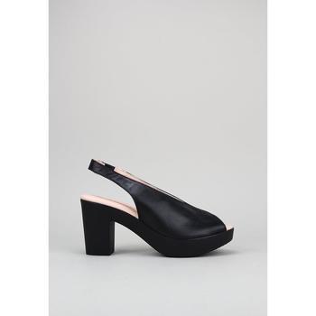 Čevlji  Ženske Sandali & Odprti čevlji Sandra Fontan  Črna