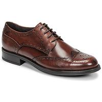 Čevlji  Moški Čevlji Derby Carlington LOUVIAN Kostanjeva