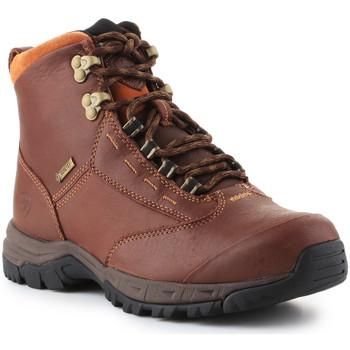 Čevlji  Ženske Polškornji Ariat Berwick lace GTX Insulated 10016298 brown