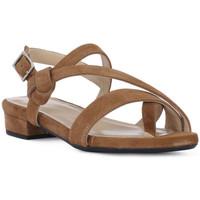 Čevlji  Ženske Sandali & Odprti čevlji Frau CAMOSCIO SELLA Marrone