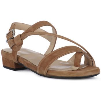 Čevlji  Ženske Sandali & Odprti čevlji Frau CAMOSCIO NERO Nero