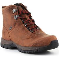 Čevlji  Ženske Pohodništvo Ariat Trekking shoes  Berwick Lace Gtx Insulated 10016229 brown