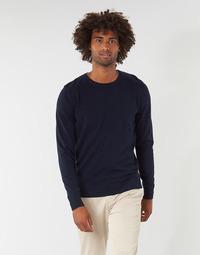 Oblačila Moški Puloverji Tom Tailor FLORET Modra
