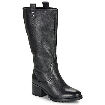 Čevlji  Ženske Mestni škornji    André ENORA Črna