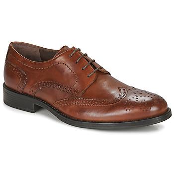 Čevlji  Moški Čevlji Derby André NORY Kostanjeva