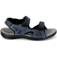 Čevlji  Moški Športni sandali TBS Berric Marine Modra