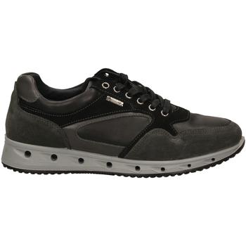 Čevlji  Moški Nizke superge IgI&CO ULSGT 21389 grisc-grigio-scuro
