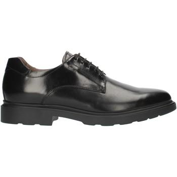 Čevlji  Ženske Čevlji Derby NeroGiardini A901141U Black