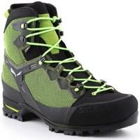 Čevlji  Moški Pohodništvo Salewa MS Raven 3 Gtx Črna, Zelena