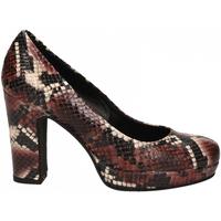 Čevlji  Ženske Salonarji Les Venues PATAGONIA barolo